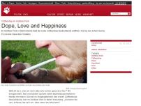 Bild zum Artikel: Coffeeshop im Görlitzer Park: Dope, Love and Happiness